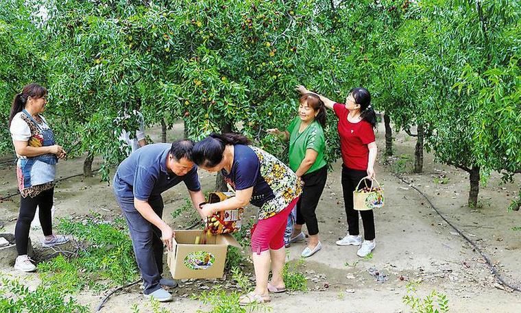 大荔县新茂天地源生态家庭农场[图]