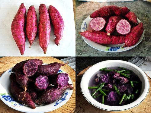 镇巴紫芯红薯[图]